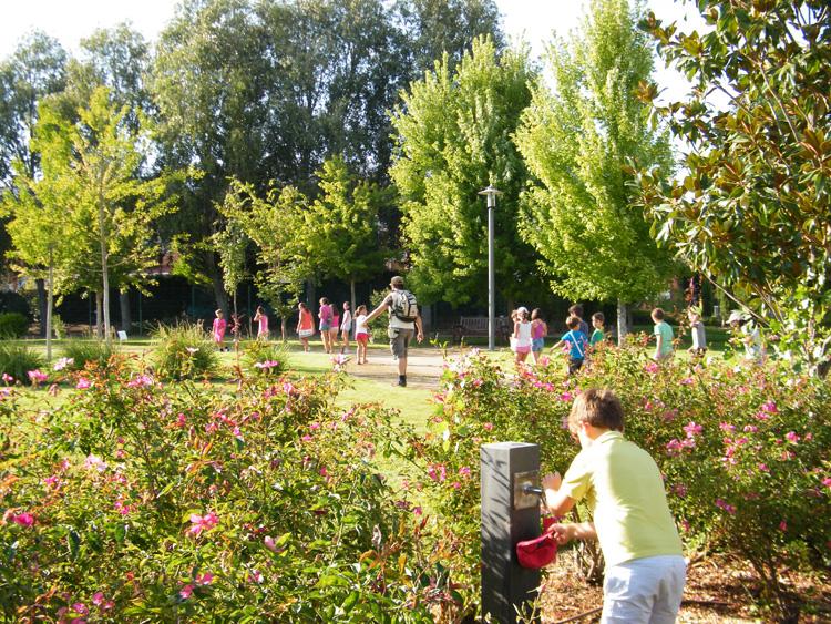 Jard n bot nico arroyo de la encomienda for Jardin botanico cursos